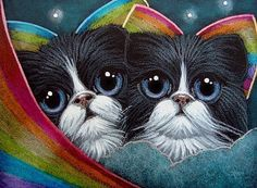 TUXEDO FAIRY CATS WITH RAINBOW WINGS - CAN SHE SEE US?