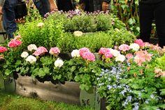 romanttinen puutarha - Google-haku