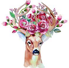 Watercolor hand drawn floral set with deer vector image on VectorStock Watercolor Deer, Watercolor Paintings, Watercolor Pictures, Deer Vector, Deer Wedding, Deer Print, Flower Skull, Handmade Design, Moose Art