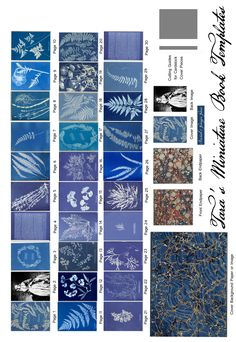 "Free Miniature Book printie of Anna Atkins' Pioneering Cyanotype book: ""British and Foreign Ferns"".  This makes a 1.5"" book."