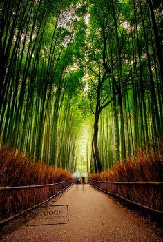 Rainy Arashiyama (Kyoto, Japan) by @PAkDocK / 500px
