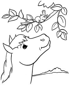 horse coloring page country farm horse