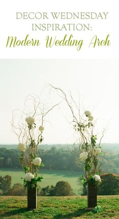 Decor Wednesday inspiration: Modern Wedding Arch. Curly willow with white hydrangeas and romantic greens.