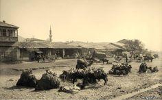 Aydın, Söke, 1910