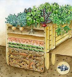 Ein Hochbeet wird mit vier unterschiedlichen Schichten gefüllt, die wichtig sind, um optimale Ernteerträge zu erzeugen.