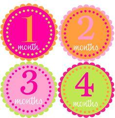 Mensual del bebé niña pegatinas-mes pegatinas-gran por noteablechic