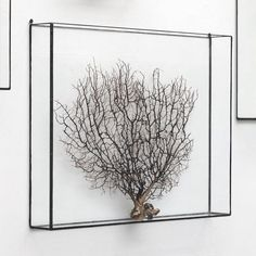 Hanging Frame daicoro 大衣 (Handmade) | 1012 | Terra