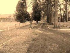 DRAŹEN ŹEĆIĆ Na staroj sam adresi Country Roads, Music, Youtube, Songs, Muziek, Musik, Youtube Movies