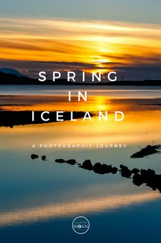 A stunning photography gallery from a week's journey around Iceland.  From snow and ice, to mossy greens and browns, early Spring in Iceland is a spectacular time to visit. | Iceland Photography | Travel Photography | Travel Iceland | Europe Travel | Reykjavik | The Golden Circle  #iceland  #europe  #travelphotography  #travel #traveller  #photography #travelblogger