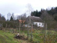 M. Gallovič: Probuzení v Ouběnicích (Historický dům s duchem rekonstruován v přírodním duchu) - Inspirace pro milovníky přírody a přírodního Sunday, Plants, Domingo, Plant, Planets