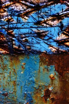 Decay www.judykonopka.com