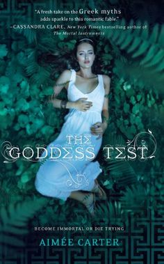 I plowed through this series recently beginning with this book. I liked the poignant subplot of a teen dealing with her mother's illness contrasted with a fantasy world.