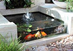 cara membuat kolam ikan kecil,cara membuat kolam ikan minimalis,contoh kolam ikan minimalis,kolam ikan hias depan rumah,kolam ikan minimalis batu alam,kolam ikan minimalis di lahan sempit,