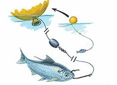 57 saltwater fishing rigs / Images