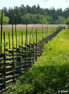 Gardsgard - a traditional fence in Sweden - Angso National Park