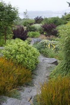 Coos Bay - Portfolio: MOSAIC GARDENS: Landscape - Garden Design and Construction in Eugene, Oregon