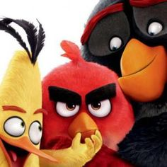 THE ANGRY BIRDS MOVIE  แองกี้เบิร์ด เดอะมูฟวี่?