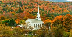 Stowe Stowe, Vermont tree leaf Nature autumn mountain woody plant sky rural area plant highland hill landscape temperate broadleaf and mixed forest house background Lake mount scenery Village national park Forest field hillside surrounded wooded lush