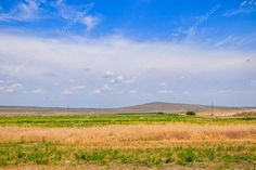 Grass and sky. Eurasian Steppe, Russian Landscape, Summer Landscape, Open Spaces, Birds In Flight, Countryside, Fields, Grass, Scenery