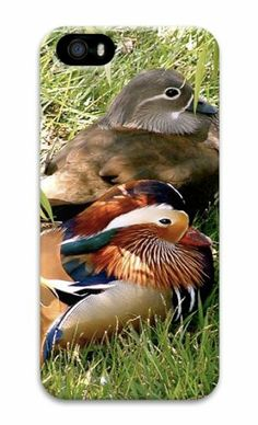 Ducks 3D Case case mate iphone 5S cover for Apple iPhone 5/5S Case for iphone 5S/iphone 5,http://www.amazon.com/dp/B00KF231PO/ref=cm_sw_r_pi_dp_nTVGtb0Z2GZQ41VP