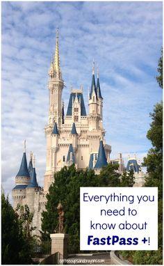 FastPass Plus at Walt Disney World from @Megan Sheakoski ::Coffee Cups and Crayons