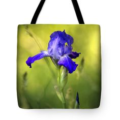 "Violet Iris Tote Bag by Christina Rollo (18"" x 18"").  The tote bag is machine washable, available in three different sizes, and includes a black strap for easy carrying on your shoulder.  All totes are available for worldwide shipping and include a money-back guarantee."