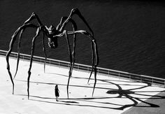 Maman (1999) is a sculpture by the artist Louise Bourgeois. The sculpture, which resembles a spider, is over 30ft high, with a sac containing marble eggs. S)