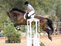 pondicherry-equestrian-challenge-pec-2014 #GrabYourDream #Adventure #Travel #Contest