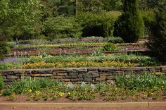 So you want a garden but your landscape is nothing more than a steep hill or slope. What is a gardener to do? Consider building a terrace garden design. This article will help.