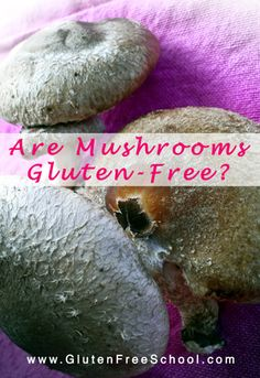 Share this post FacebookTwitterGoogle+PinterestLinkedIn As you may recall, my article questioning whether mushrooms are gluten-free and safe for those with celiac and gluten sensitivity caused quite a stir. (CLICK HERE to read it.) The folks atThe Mushroom Councilgot wind of my article and finally agreed that it was time to get mushrooms tested because of…