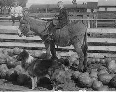 Louise Weddington & Howard Faler at the Weddington Ranch, ca. 1910. Weddington Family Collection.