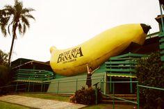 The Big Banana, Coffs Harbour NSW