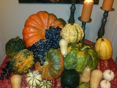 A collection of Pumpkins and Gourds. Fall decorating just doesn't get any easier than that! http://www.fearlessentertaining.com/