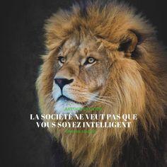 #dropshipping_ecom_shopify #dropshipping #ecommerce #marketplace #amazon #amz #business en ligne E Bay, Ecommerce, Digital Marketing, Lion, Online Marketing, Earning Money, I Want You, Philosophy, Leo