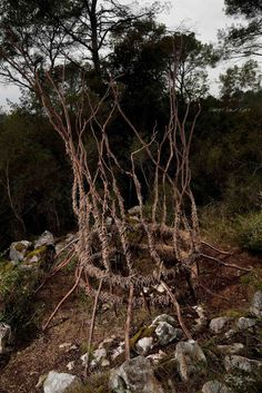 A Year in a French Forest: Sculpture No 23.Forest Sculptor Spencer Byles.Pho...