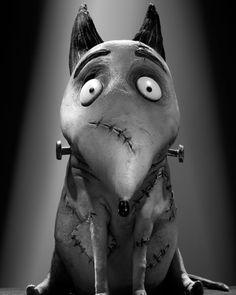 Sparky from Walt Disney Pictures' 'Frankenweenie', directed by Tim Burton. Art Tim Burton, Tim Burton Stil, Tim Burton Kunst, Film Tim Burton, Tim Burton Characters, Burton Burton, Tim Burton Personajes, Desenhos Tim Burton, Nightmare Before Christmas
