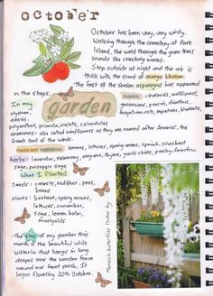 Garden Journal Printables Updated Gardens Garden journal and