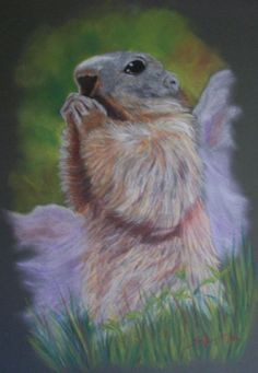 Artwork >> Aimetti Sylvain >> #marmot #artwork, #masterpiece, #canvas, #animals