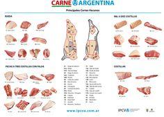 Cortes de carne vacunas argentina.
