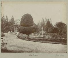 De stadstuin in Soerabaja 1888 Dutch East Indies, Dutch Colonial, Natural Resources, Surabaya, State Parks, Bali, Culture, History, Painting