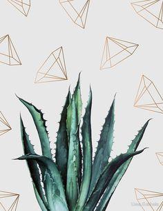 Shop Vintage succulent boho agave aloe cactus desert Case-Mate iPhone case created by iBella. Succulents Drawing, Blue Succulents, Hanging Succulents, Agaves, Illustration Botanique, Botanical Illustration, Illustration Art, Iphone 7, Succulent Tattoo