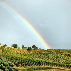 Rainbow in Tuscany! #toscana #tuscany #instagram #tuscanygram