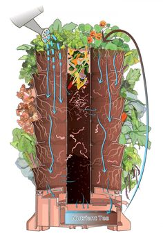 How a Garden Tower works: the ecology inside a Garden Tower