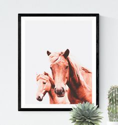 Hey, j'ai trouvé ce super article sur Etsy, chez https://www.etsy.com/be-fr/listing/486126667/photo-de-cheval-photo-de-chevaux