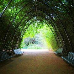Jardins de Pedralbes / Barcelona, Spain