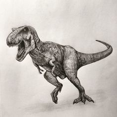EatSleepDraw is an online art gallery where we post original content submitted by contributors across the globe. Jurassic World Dinosaurs, Jurassic Park World, Dinosaur Drawing, Dinosaur Art, Animal Sketches, Animal Drawings, Dinosaur Fabric, Prehistoric Creatures, Tyrannosaurus Rex