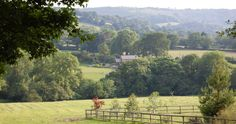 Balcarras Farm Cottages, Charlton Kings, Cheltenham, Gloucestershire, England. Self Catering. Accepts Dogs. #WeAcceptPets. PetFriendly. Holiday. Travel. Walks. Day Out. Dog Friendly.