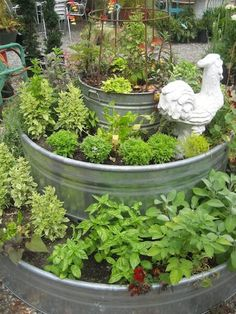 Tri-level raised garden bed in galvanized metal troughs