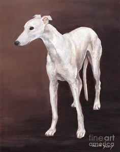 White Greyhound Painting - White Greyhound Fine Art Print