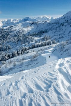 Skier heading for Samoëns Grand Massif ski area, Haute-Savoie, French Alps. French Ski Resorts, Best Ski Resorts, Alpine Ski Resort, Snow Pictures, Winter Mountain, Ski Season, Winter Magic, French Alps, Snow Skiing